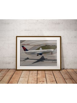Poster Delta Airlines in...